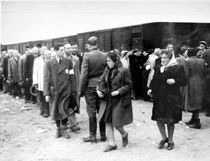 1389.3 Holocaust F