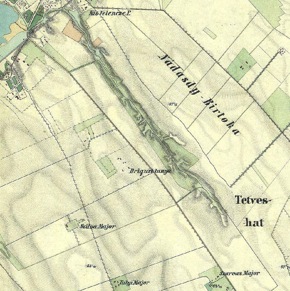 DTanya 1864