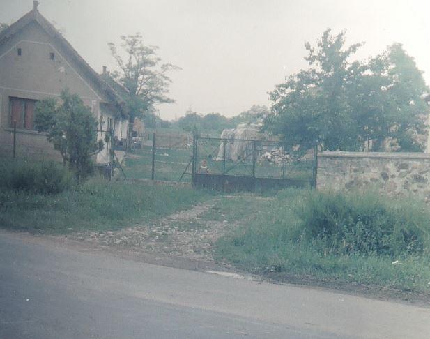 1986_1