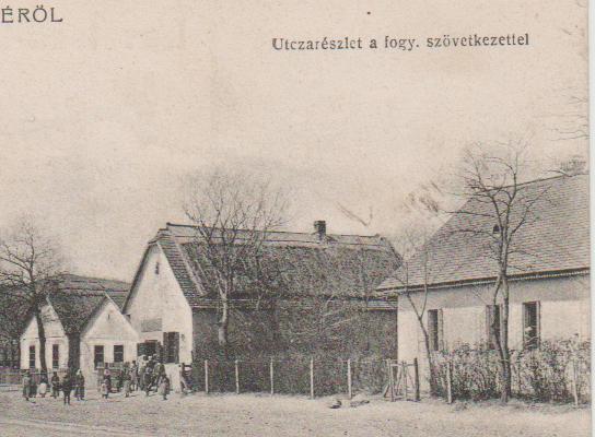 hangya1908